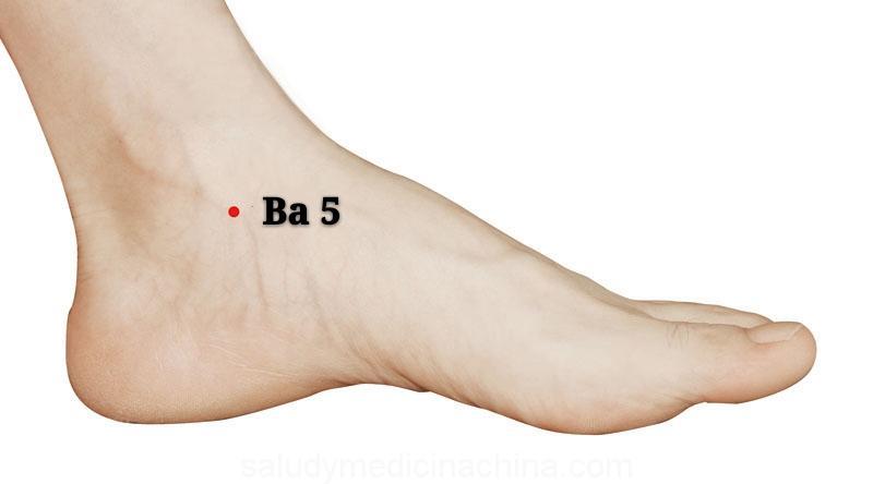 punto b5 shangqiu