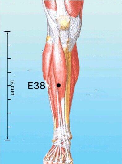 punto e38 tiaokou anatomia