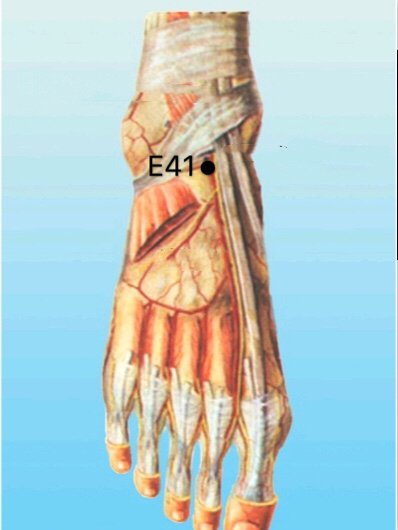 punto E41 Jiexi anatomia