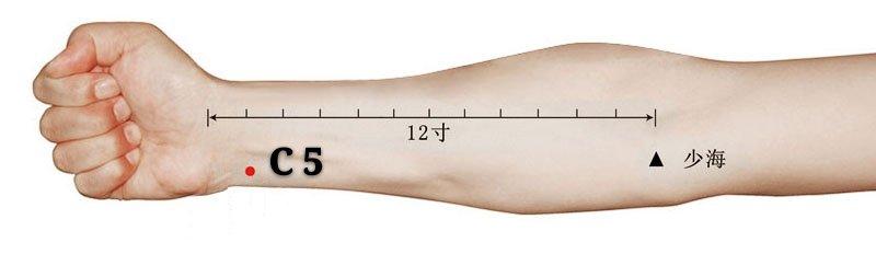 punto c5 tongli