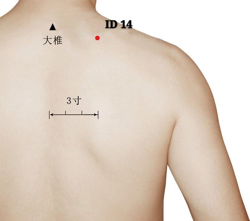 punto id14 jianwaishu