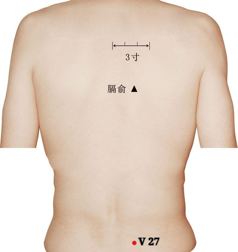 punto v27 xiaochangshu