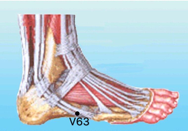 punto v63 jinmen anatomia