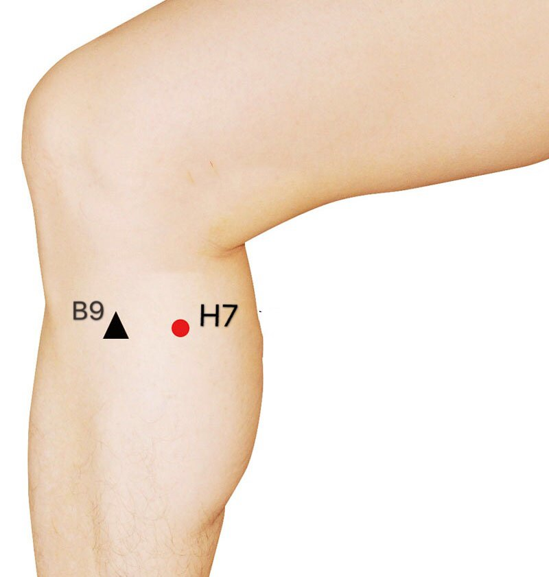 punto h7 xiguan
