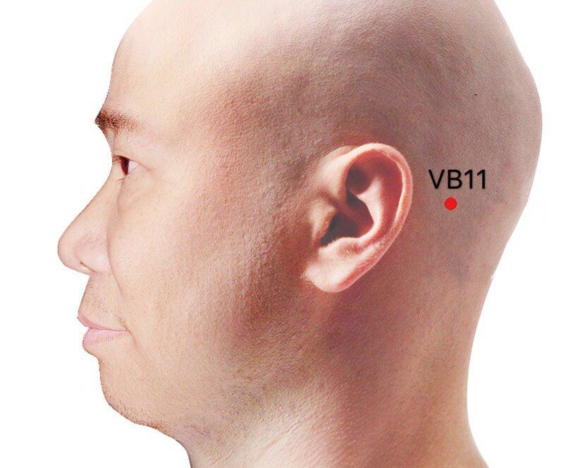 punto vb11 touqiaoyin