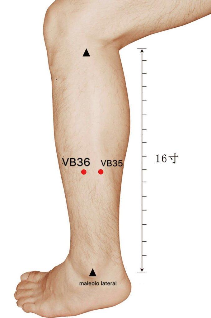 punto vb36 waiqiu