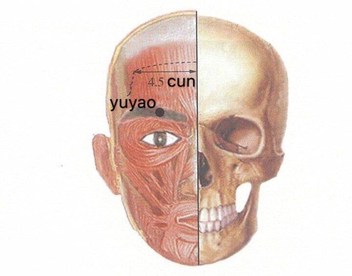 punto anatomica yuyao