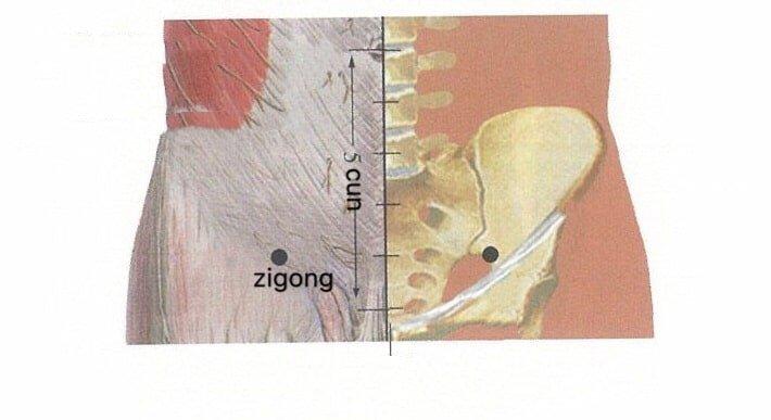 punto anatomica zigong