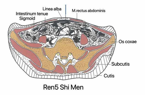punto ren5