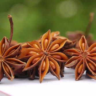 Ba Jiao Hui Xiang 八角茴香 (Illicium verum)